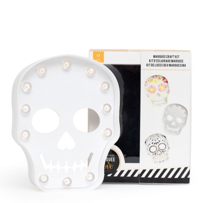314887-Plastic-Skull-Kit